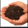 التربة و مكوناتها الاساسية